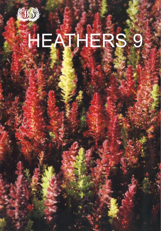 Heathers 9: Yearbook of the Heather Society 2012